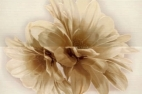 Decor Tresor Compozitione Fiori Beige 50x76
